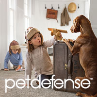 Pet Defense carpet exclusively at Floors To Go.